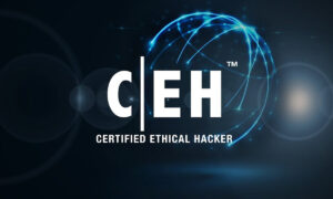 What Is Ethical Hacking? How To Get Paid By Protecting Computers From Being Hacked